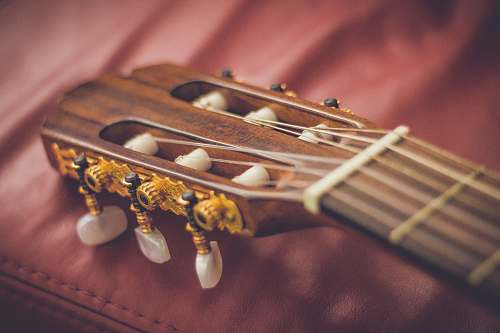 guitar macro shot photography of brown classical guitar headstock instrument