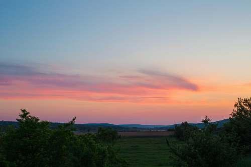outdoors green grass field sky