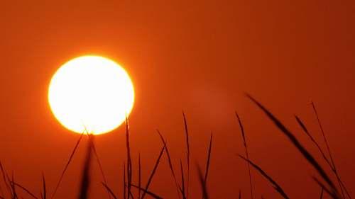 sky yellow sun outdoors