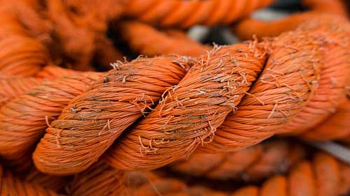 rope selective focus photo of orange rope red