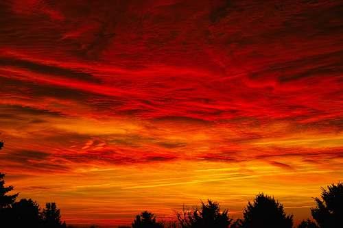 nature  dawn