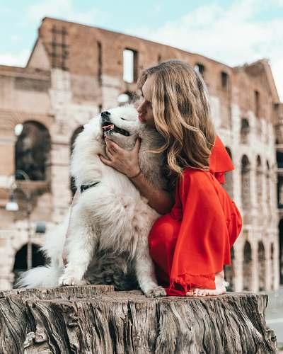 human woman petting dog dog