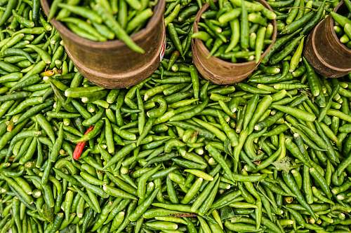 vegetable green chilly produce