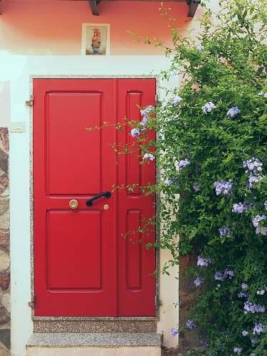 door red wooden 2-panel door vase