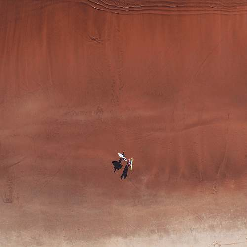 ardeidae aerial photo of two person in desert bird