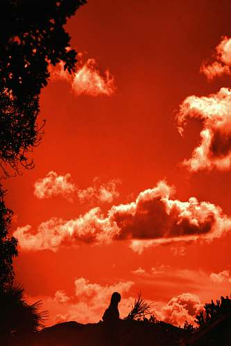 nature orange sky outdoors
