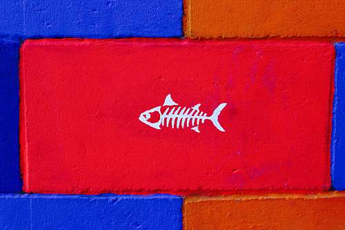 gulfport photo of white fish painted brick united states