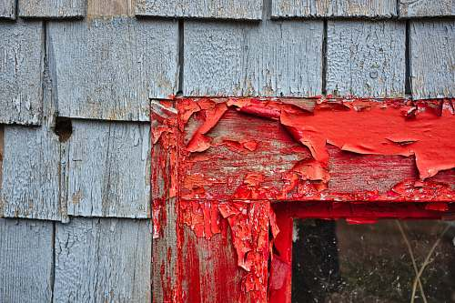 prince edward island red paints on wooden frame during daytime canada