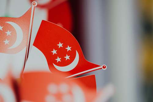 photo flag selective focus photography of flaglet of Turkey logo free for commercial use images