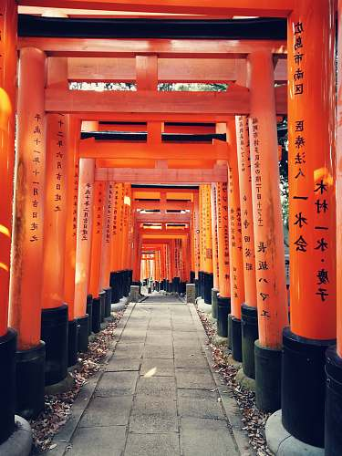 japan gray concrete pathway between red-and-black posts torii