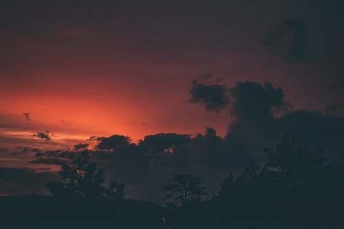 sky silhouette photo of tree under red sky dawn