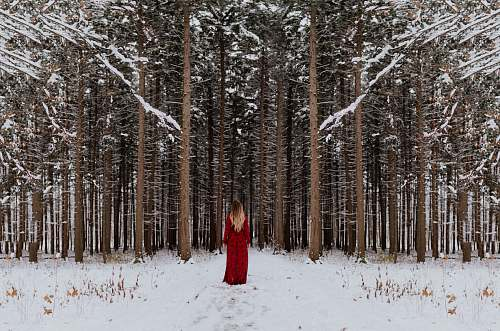 forest woman standing in front of forest winter