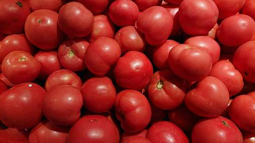 food pile of red tomatoes produce