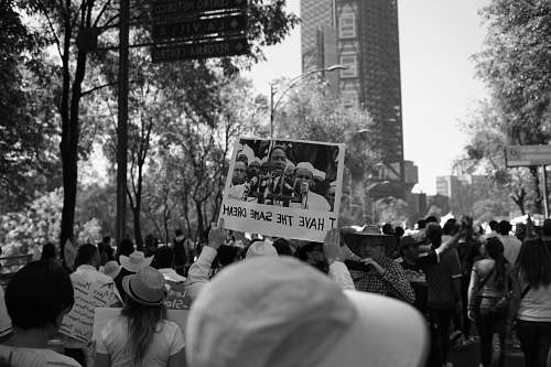 person grayscale photo of people in the rally black-and-white
