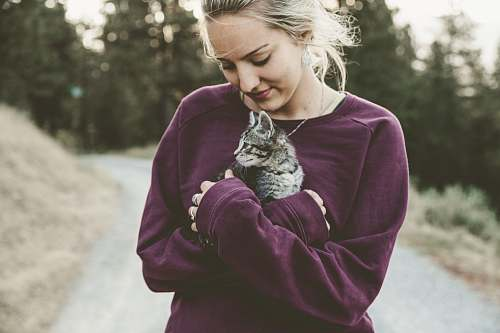 human selective focus photography of woman hugging gray kitten person