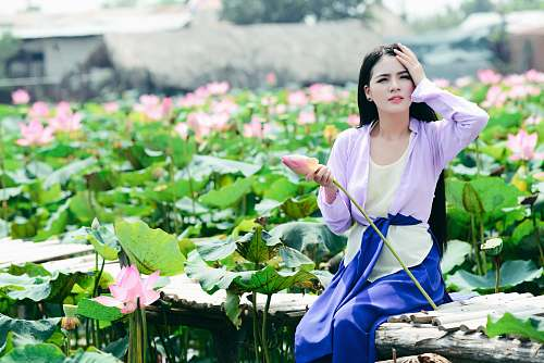 person tilt shift photography of woman sitting behind pink flower plants human