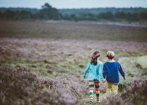 human two children holding hands while walking in the middle of the fields person