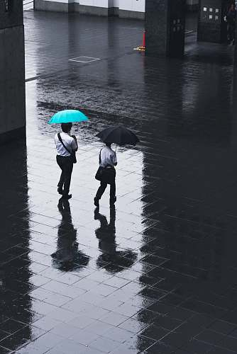 umbrella two men walking on road holding umbrellas during rainy time canopy