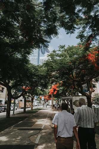 human two men walking on sidewalk person