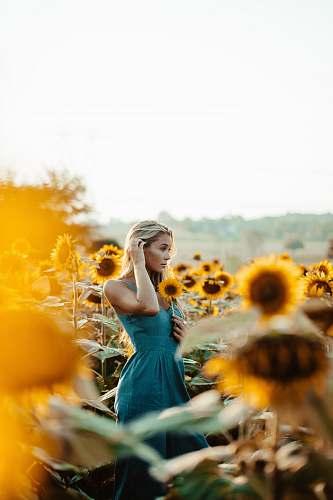 human women's blu sleeveless dress sunflower