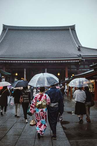 people people walking on street while holding umbrellas going to pagoda japan