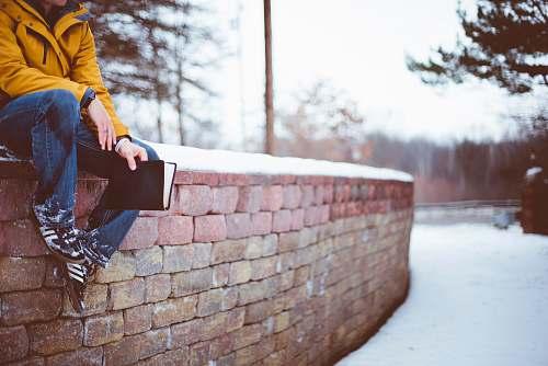 people person sitting on brick wall human