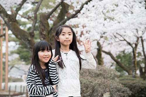 people two girls standing behind brown tree with white leaves human