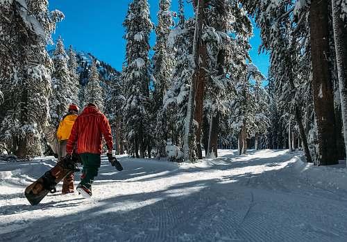people two men walking on snow human