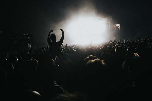 human silhouette photography of people in concert person