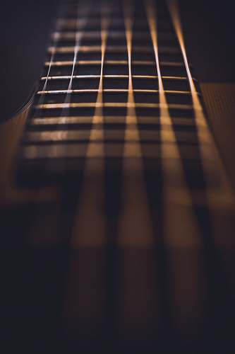 music close-up photo of guitar strings fret