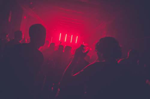 person people partying inside room club