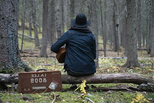 people person playing guitar in forest person