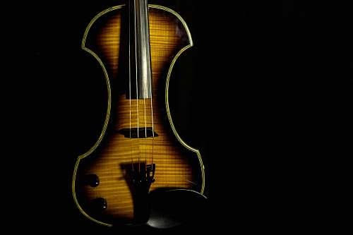 violin brown violin fiddle