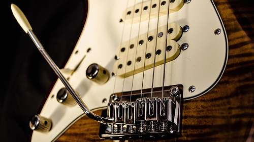 guitar close up photography of brown electric guitar electric guitar
