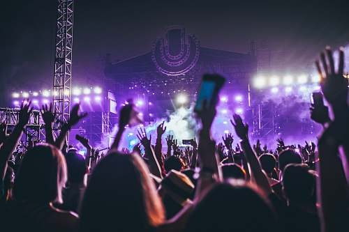 crowd group of people raising there hands in concert festival