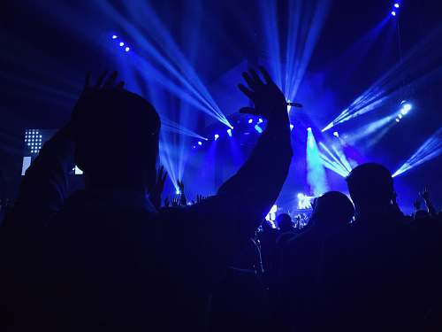 concert group of people standing inside dome watching concert blue