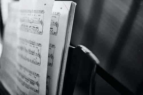 black-and-white music score closeup photo cologne
