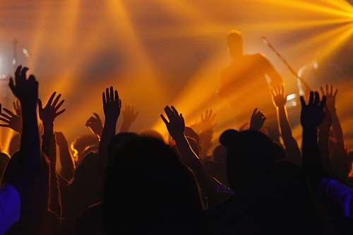 crowd people jamming while man singing on stage concert
