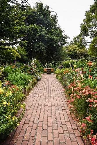 garden brown brick pathway between green plants during daytime flagstone