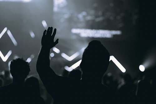 human silhouette of people in front of stage crowd