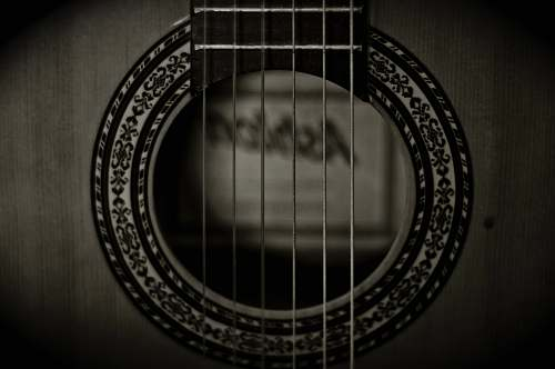 christchurch photo of grayscale guitar strings new zealand