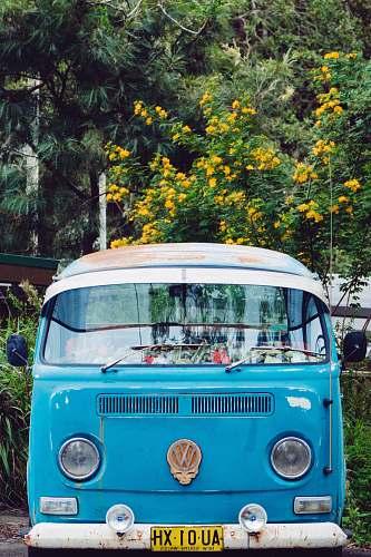 vehicle blue Volkswagen T3 in front of trees bus