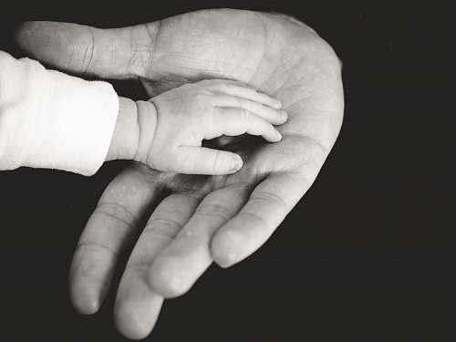 person child and parent hands photography hands
