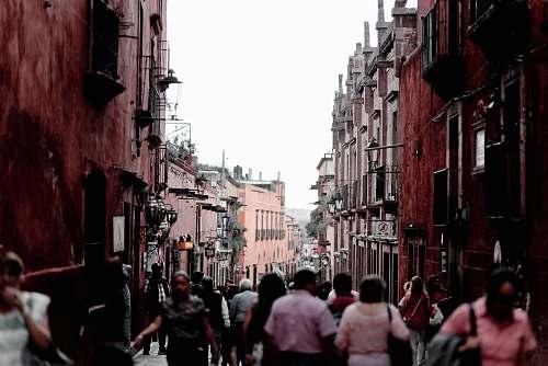 street people walking on street during daytime town