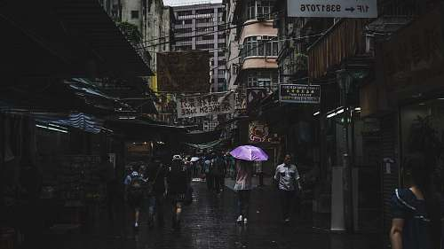 umbrella photography of people walk during rain building
