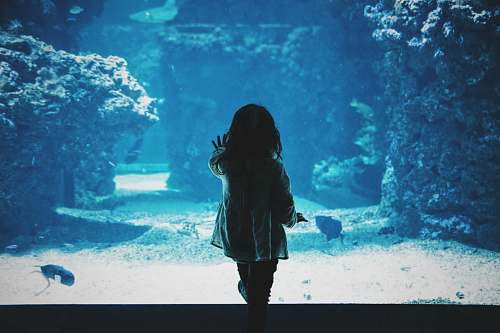 water toddler girl touching glass tank aquarium