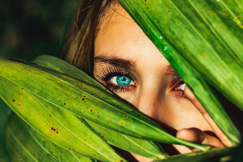 person woman behind green leaves plant