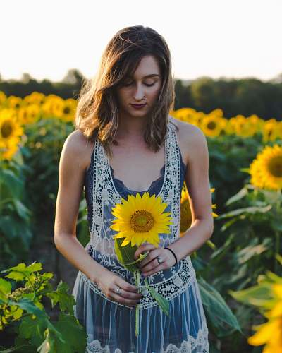 human woman standing at sunflower field woman
