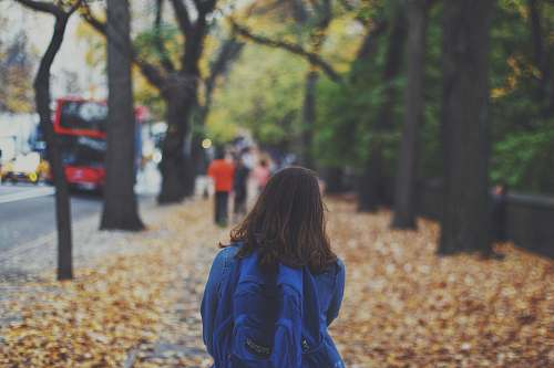 person woman with blue backpack on street full of fallen leaves human