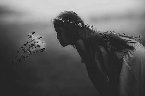 people grayscale photo of girl looking at flowers black-and-white